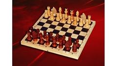 Шахматы Гроссмейстерские (турнирные) с доской С-4а/б/ШК-4 (410*210)